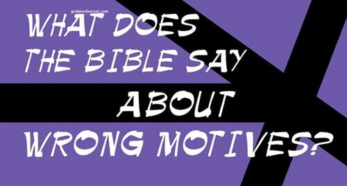 Free Download Niv Bible For Easyworship